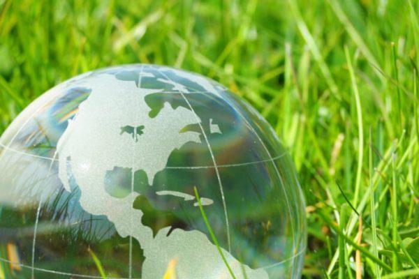 Волгоградская область активно включилась в нацпроект «Экология»